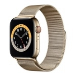 Apple Watch Series 6 GPS + Cellular 44mm Gold Stainless Steel Case with Gold Milanese Loop
