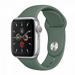 Apple Watch Series 5 GPS 40mm Aluminum Case with Sport Band Серебристый/Сосновый лес